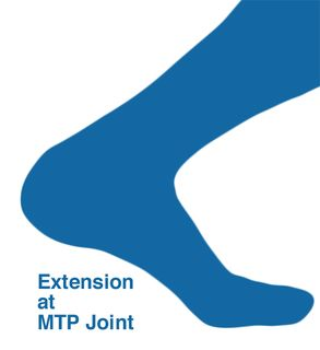 MTP_extension-illustration